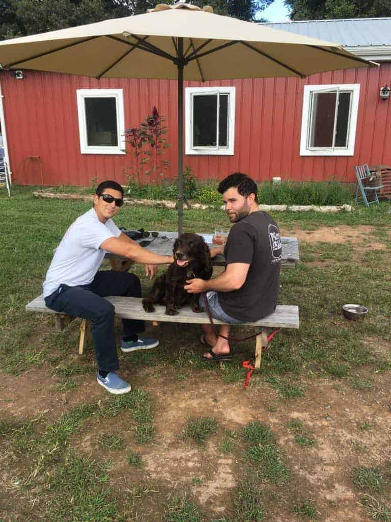 boykin dog with two men