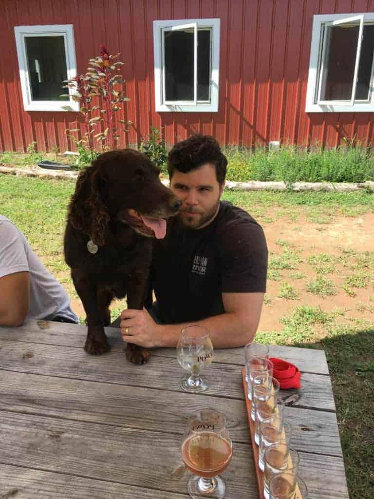 boykin dog with man drinking beer